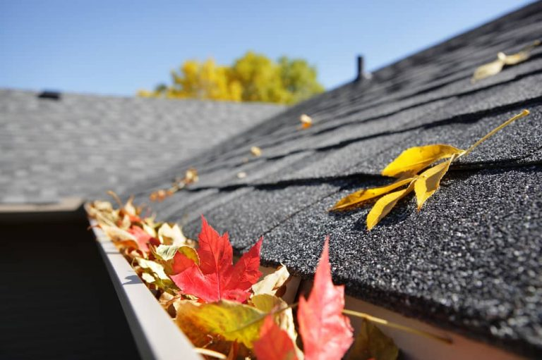 Roof with a rain drain full of autumn leaves